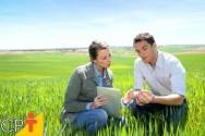 Gestão ambiental: definição e objetivos