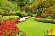 Como combater ervas daninhas em jardins