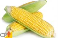 Milho verde: principais e melhores cultivares para plantio