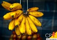 Banana: primeiro lugar entre as frutas mais consumidas no Brasil