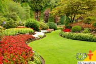 Jardinagem e paisagismo: manutenção de gramados