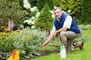 Quero implantar um jardim: como nutrir o solo?