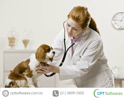Médica Veterinária