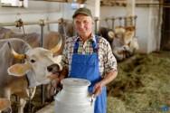Como otimizar a sua propriedade rural e aumentar seu lucro