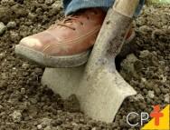 Vou plantar milho. Com que frequência devo fazer a amostragem do solo?