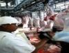 São 15 mil vagas de emprego no setor de processamento de carne