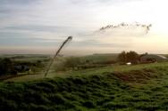 O biofertilizante é natural e tem características bem adequadas para ser aplicado como fertilizante.