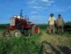 Dia do Agricultor: nossa homenagem