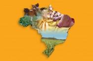 Brasil - desenvolvimento agropecuário já!