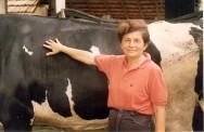 O segredo da produtividade leiteira se resume em trabalho, dedicação e tecnologia
