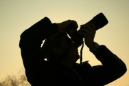 08 de janeiro: Dia Nacional do Fot�grafo