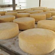 INPI reconhece queijo Canastra