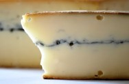 Produção de queijos finos - queijo morbier