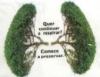 Menor perda das florestas mundiais é resultado de queda no desmatamento no Brasil