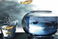 Aprenda Fácil Editora: Correr riscos calculados