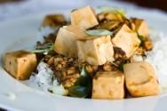 Tofu orgânico é a nova aposta de uma empresa do Paraná