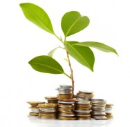Aprenda Fácil Editora: Investimento inicial