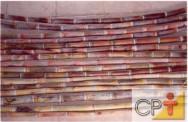 Cachaça artesanal: escolha da cana-de-açúcar