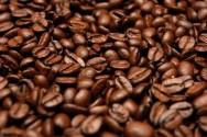 Pesquisa testa novo método para a avaliação de sementes de café