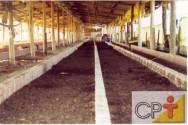 Criação de minhocas: construção do minhocário