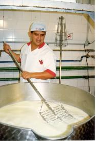 Pesquisadores produzem etanol de soro de leite