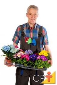 Treinamento de florista: como conservar arranjos de flores