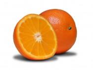 Variedades de citros, clima e solo