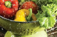 Contaminação dos alimentos: fonte contaminante e cuidados com os alimentos