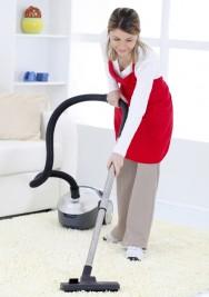 Empresa de limpeza: fonte de renda e profissionalização dos serviços