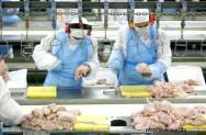 CLT, Consolidação das Leis de Trabalho - Serviços frigoríficos: duração e condições de trabalho
