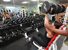 Curso CPT: Curso Online Musculação para Academia - Membros Superiores, Inferiores, Abdominal e Glúteo
