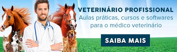 Conheça o VET Profissional, aulas práticas, cursos e softwares para médico veterinário