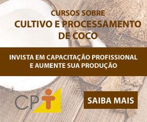 Área Cultivo e Processamento de Coco 02