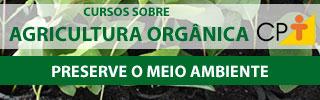 Área Agricultura Orgânica 07