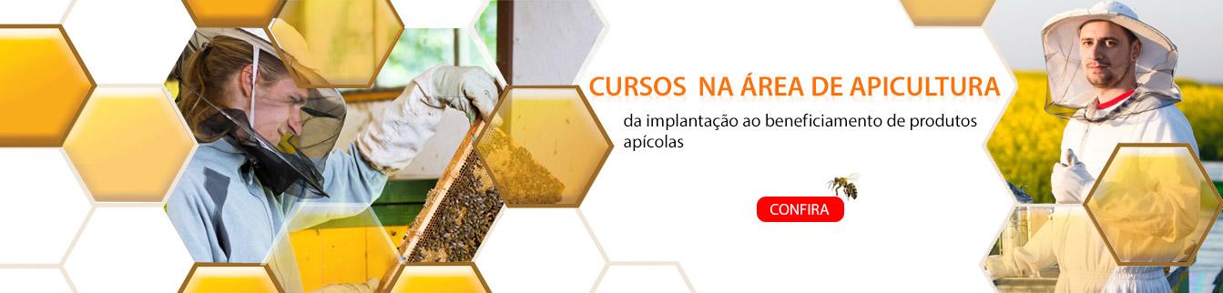 Cursos na área de Apicultura, da implantação ao beneficiamento de produtos apícolas.
