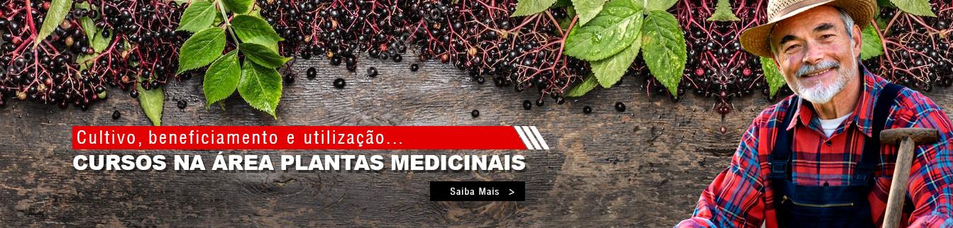Cultivo, beneficiamento e utilização. Cursos na área Plantas Medicinais