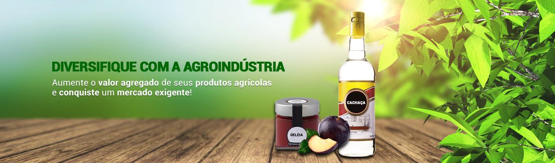 Diversifique com a Agroindústria!