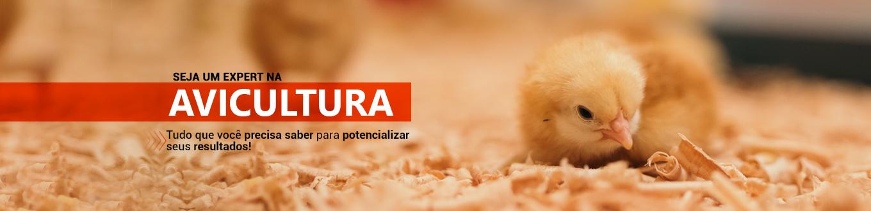 Seja um expert em avicultura! Tudo o que você precisa saber para potencializar seus resultados!