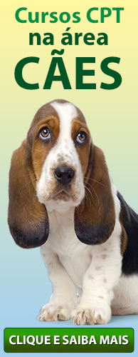 Conheça os Cursos CPT na área Cães. Clique aqui.