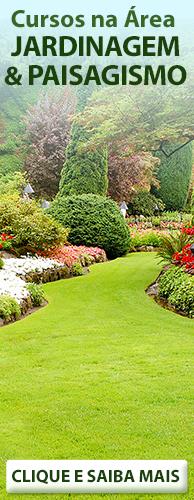 Conheça os Cursos CPT na área Jardinagem e Paisagismo. Clique aqui.