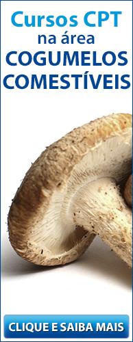 Conheça os Cursos CPT na área Cogumelos Comestíveis. Clique aqui.