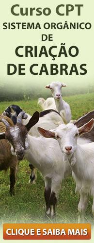 Curso CPT Sistema Orgânico de Criação de Cabras. Clique aqui e conheça!