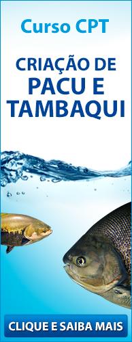 Curso CPT Criação de Pacu e Tambaqui. Clique aqui e conheça!