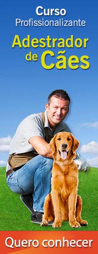 Curso CPT Adestrador de Cães. Clique aqui e conheça!