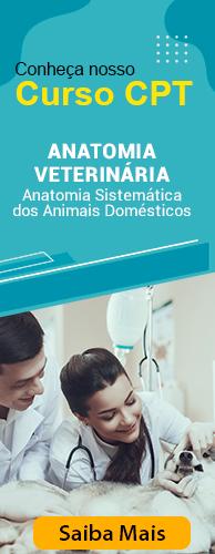 Curso CPT Anatomia Veterinária: Anatomia Sistemática dos Animais Domésticos. Clique aqui e conheça!