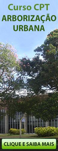 Curso CPT Arborização Urbana. Clique aqui e conheça!