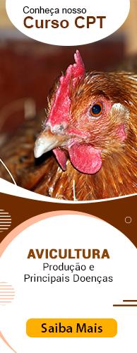 Curso CPT Avicultura - Produção e Principais Doenças. Clique aqui e conheça!