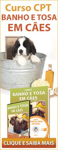 Curso CPT Como Fazer Banho e Tosa em Cães. Clique aqui e conheça!