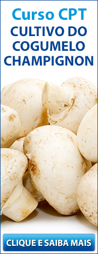Curso CPT Cultivo do Cogumelo Champignon. Clique aqui e conheça!