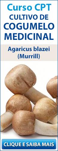 Curso CPT Cultivo de Cogumelo Medicinal - Agaricus blazei (Murrill). Clique aqui e conheça!